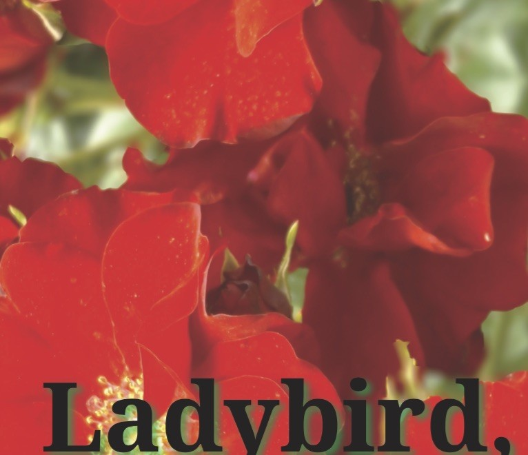 Ladybird Cover (social)