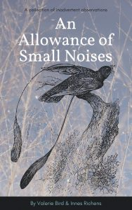 An Allowance of Small Noises cover